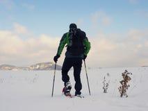 Uomo con la passeggiata delle racchette da neve in nevoso archivata Viandante che snowshoeing nella neve della polvere Fotografia Stock Libera da Diritti
