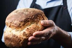 uomo con pane fresco nelle sue mani, in panettiere in grembiule e in givi della camicia fotografia stock