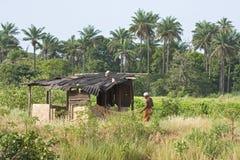 Uomo con rete da pesca in Gambia Immagine Stock