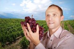 Uomo con un mazzo di uva sulla vista della vigna Fotografie Stock Libere da Diritti