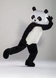 Uomo in costume del panda Immagini Stock Libere da Diritti