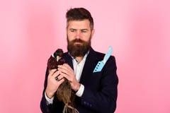 Uomo d'affari barbuto hipster Uomo pazzo sul rosa uomo con il pollame Pubblicità pazza Idea insolita Idea creativa fotografia stock