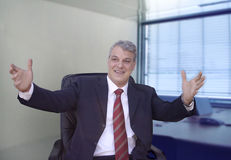 Uomo d'affari che gesticulating Immagine Stock Libera da Diritti