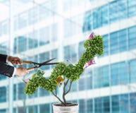 Uomo d'affari che taglia e regola l'albero dei soldi a forma di come uno stats della freccia Concetto di start-up rappresentazion Fotografia Stock Libera da Diritti