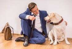 Uomo d'affari con il cane Immagine Stock