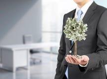 Uomo d'affari con un albero minuscolo del dollaro, ufficio rappresentazione 3d Immagine Stock