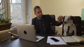 uomo d'affari felice che lavora al computer portatile in ufficio che si siede accanto al cane con un legame video d archivio