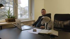 uomo d'affari felice che lavora al computer portatile in ufficio che si siede accanto al cane con un legame archivi video