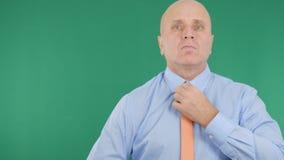 Uomo d'affari With Green Screen nel fondo che sistema il suo legame immagini stock libere da diritti