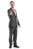 Uomo d'affari integrale del legame del vestito immagini stock