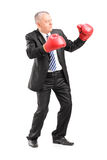 Uomo d'affari maturo con i guantoni da pugile rossi pronti a combattere Fotografia Stock