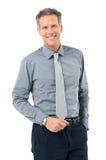 Uomo d'affari maturo sorridente felice fotografia stock libera da diritti