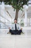 Uomo d'affari Meditating Under Tree fotografia stock