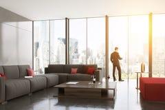 Uomo d'affari nel salone grigio del sofà Immagine Stock Libera da Diritti
