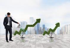 Uomo d'affari quell'innaffiatura della pianta con una forma della freccia Concetto di crescita dell'economia della società immagini stock