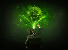 Uomo d'affari in sedia che si siede davanti ad un albero d'ardore Immagini Stock Libere da Diritti