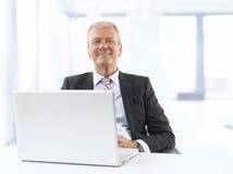 Uomo d'affari senior in ufficio Immagine Stock Libera da Diritti