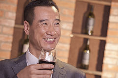Uomo d'affari sorridente Holding Wine Glass Fotografia Stock