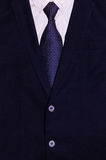 Uomo d'affari Suit Fotografia Stock Libera da Diritti