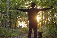 Uomo davanti all'aumento del sole attraverso gli alberi della foresta Immagine Stock