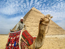 Uomo del cammello davanti alla piramide di Giza, Il Cairo, Egitto Immagini Stock