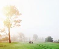Uomo del campo da golf fotografia stock libera da diritti