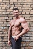 Uomo del muscolo Fotografia Stock Libera da Diritti