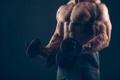 Uomo del muscolo che fa i riccioli del bicipite fotografia stock libera da diritti
