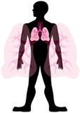 Uomo del polmone Fotografia Stock