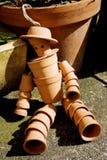 Uomo del vaso di fiore di terracotta Immagini Stock