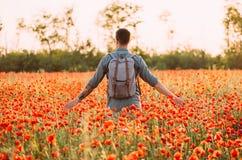 Uomo del viaggiatore che cammina nel prato rosso dei papaveri immagini stock