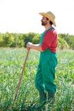 Uomo dell'agricoltore che lavora nel frutteto della cipolla con la zappa Fotografia Stock Libera da Diritti