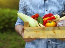Uomo dell'agricoltore che tiene gli ortaggi freschi riempiti della scatola di legno Fotografia Stock