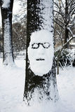 Uomo dell'albero Immagini Stock Libere da Diritti