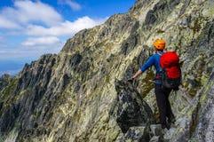 Uomo dell'alpinista che gode del paesaggio Immagini Stock