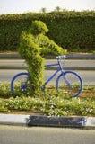Uomo dell'erba verde sulla bici Fotografia Stock Libera da Diritti