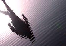 Uomo dell'ondulazione Fotografia Stock