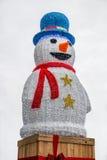 Uomo della neve Immagine Stock