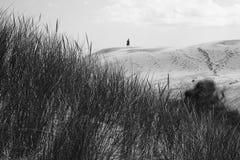 Uomo in deserto Fotografie Stock