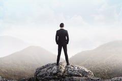 Uomo di affari che sta sulla cima della montagna che esamina