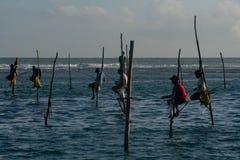 Uomo di Fisher in Sri Lanka immagini stock libere da diritti