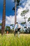 Uomo di immagine dell'alpinista che cammina sulla foresta profonda Fotografia Stock