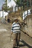 Uomo di Madeira anziano che trascina con la canna da zucchero Fotografia Stock