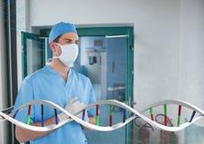 Uomo di medico che sta con il filo del DNA 3D Fotografie Stock Libere da Diritti