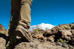 Uomo di sport sopra la montagna Immagine Stock Libera da Diritti