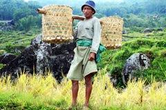 Uomo di Toraja Fotografie Stock Libere da Diritti