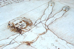 Uomo di Vitruvian Royalty Illustrazione gratis