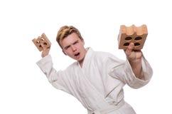 Uomo divertente di karatè che rompe i mattoni Immagini Stock