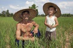 Uomo e bambino nella risaia di riso, Tailandia fotografia stock libera da diritti