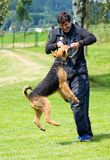 Uomo e cane Immagine Stock Libera da Diritti